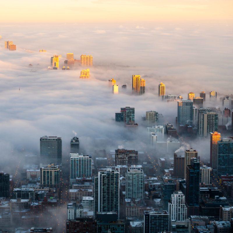 radici ecologia smog inquinamento