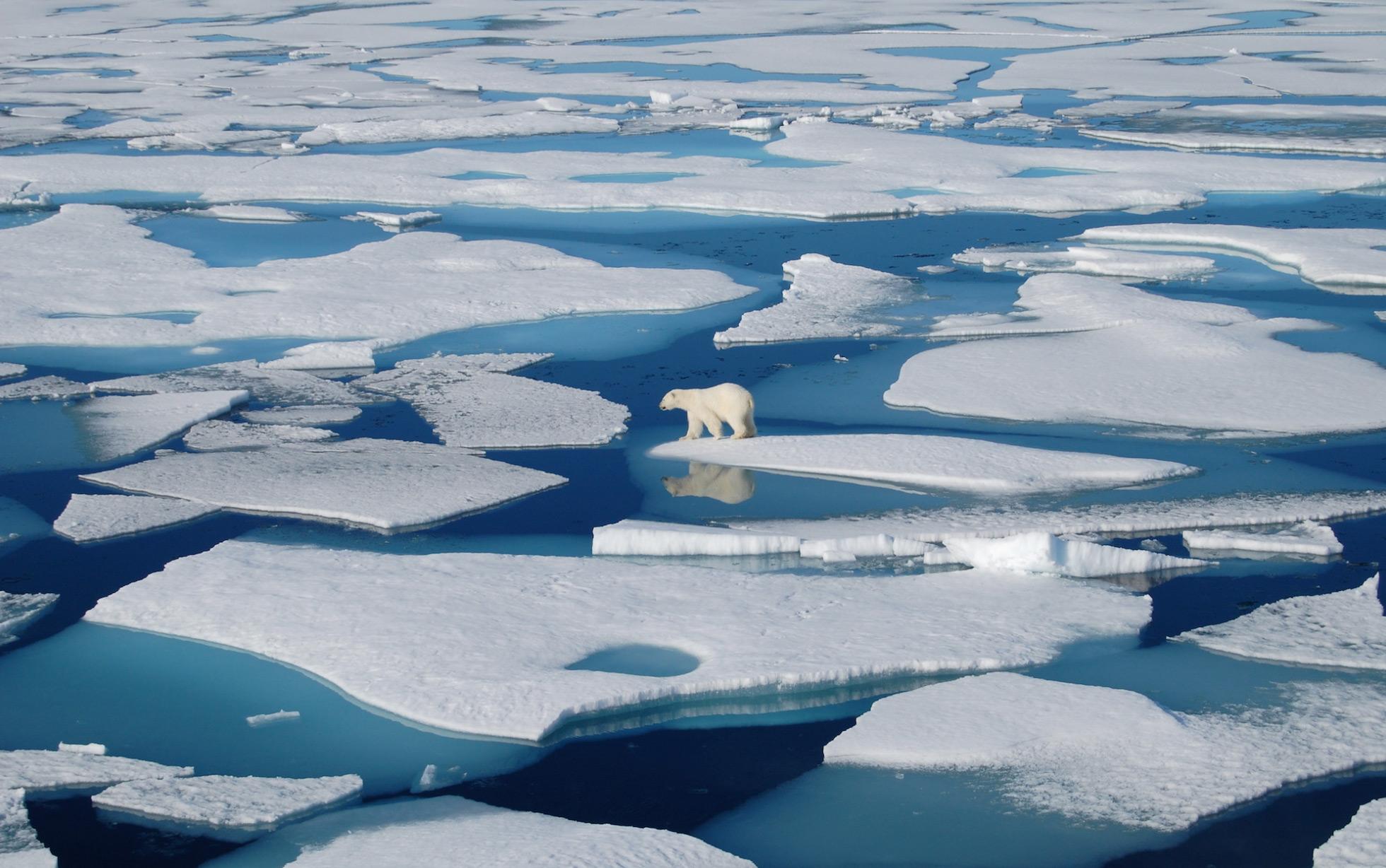 Arctic Ocean melting